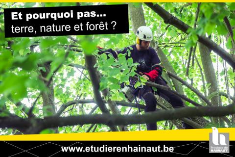Terre, nature et forêt